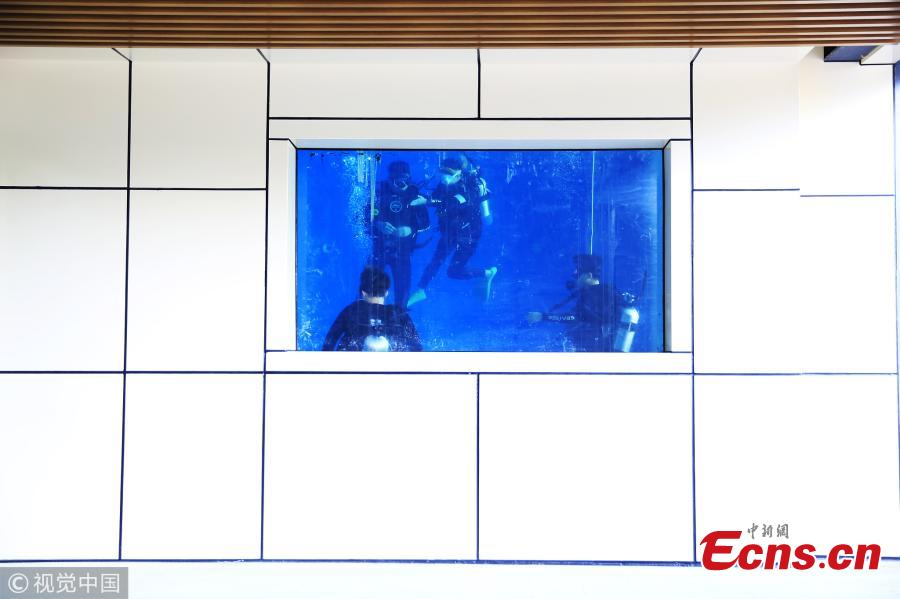 Yu Yunzhi, 24, has built a seven-meter-deep pool for scuba diving in an office building in Hangzhou, East China's Zhejiang Province. Yu scuba dived for the first time during a visit to Taiwan in 2014. Since then, she has continued her training and achieved the highest level of certification. (Photo/VCG)
