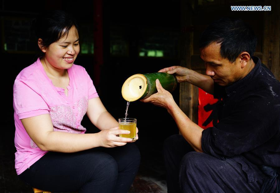 Villagers taste bamboo wine at Daliu Village, Longji Town, Longsheng County, south China\'s Guangxi Zhuang Autonomous Region, May 29, 2018. Best known for its rich bamboo materials, Longji has developed bamboo wine industry in recent years. The bamboo wine, usually taking three or four months for brewing in growing bamboos, is popular here. (Xinhua/Huang Yongdan)