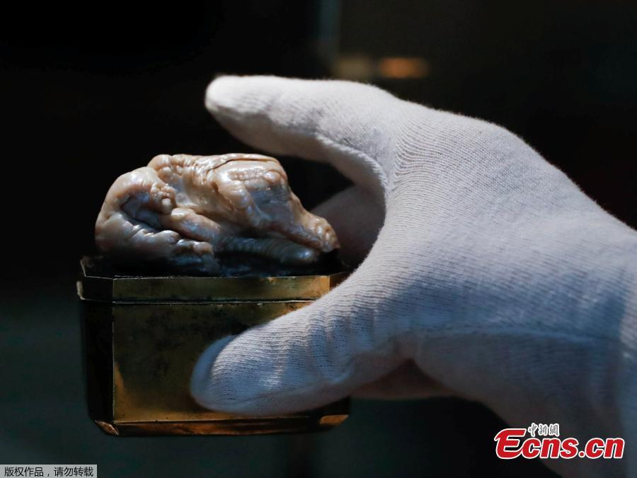 The Sleeping Lion Pearl, which once belonged to Catherine the Great and believed to be the world\'s largest freshwater pearl, is displayed before being auctioned in the Hague, Netherlands May 28, 2018.   (Photo/Agencies)  The world\'s largest known freshwater pearl, which once belonged to Catherine the Great, was sold on Thursday in the Netherlands for US$374,000, auction house Venduehuis said.