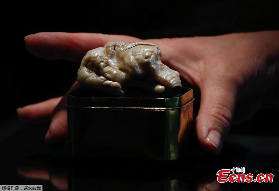The Sleeping Lion Pearl, which once belonged to Catherine the Great and believed to be the world\'s largest freshwater pearl, is displayed before being auctioned in the Hague, Netherlands May 28, 2018.  (Photo/Agencies)
