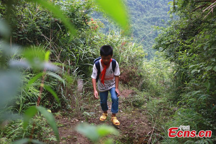 Li Jianwen, 10, is on his way to Dayadong Primary School in Liucheng County, South China's Guangxi Zhuang Autonomous Region, May 31, 2018. It takes Li about one and a half hours to climb the mountain to his school, a three-hour return commute each day. (Photo: China News Service/Zhu Liurong)