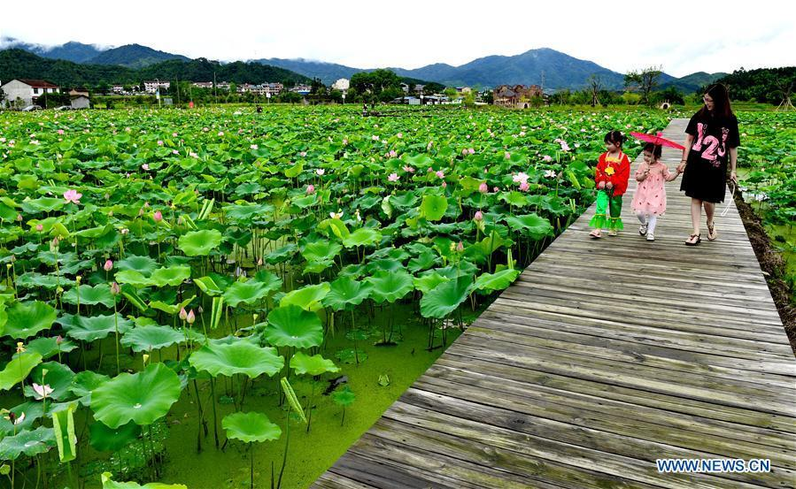 Tourists visit a lotus pond in Wufu Township of Wuyishan City, southeast China\'s Fujian Province, June 1, 2018. The town developed local economy by combining farming and tourism. (Xinhua/Zhang Guojun)