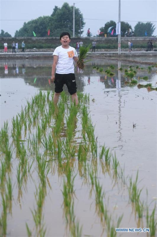 A boy participates in a rice transplanting game in Hongqi Village of Hangzhou, east China\'s Zhejiang Province, June 2, 2018. The game was organized to evoke people\'s memory of traditional farming customs and promote local tourism. (Xinhua/Xu Yu)
