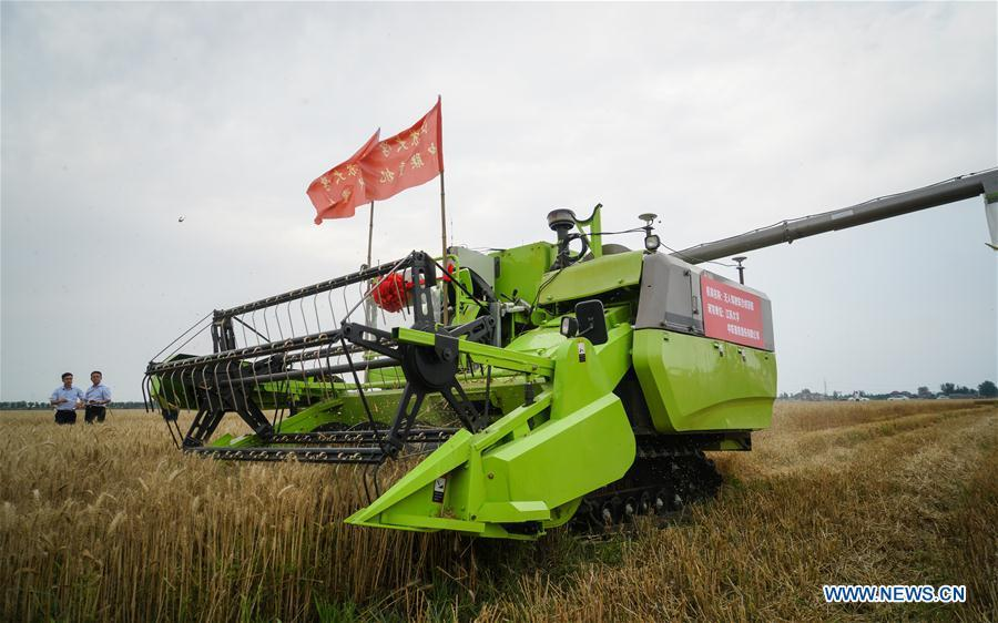 An unmanned combine harvester works in a field during the demonstration of an agricultural pilot program featuring unmanned production process in Xinghua, east China\'s Jiangsu Province, June 2, 2018. (Xinhua/Li Xiang)