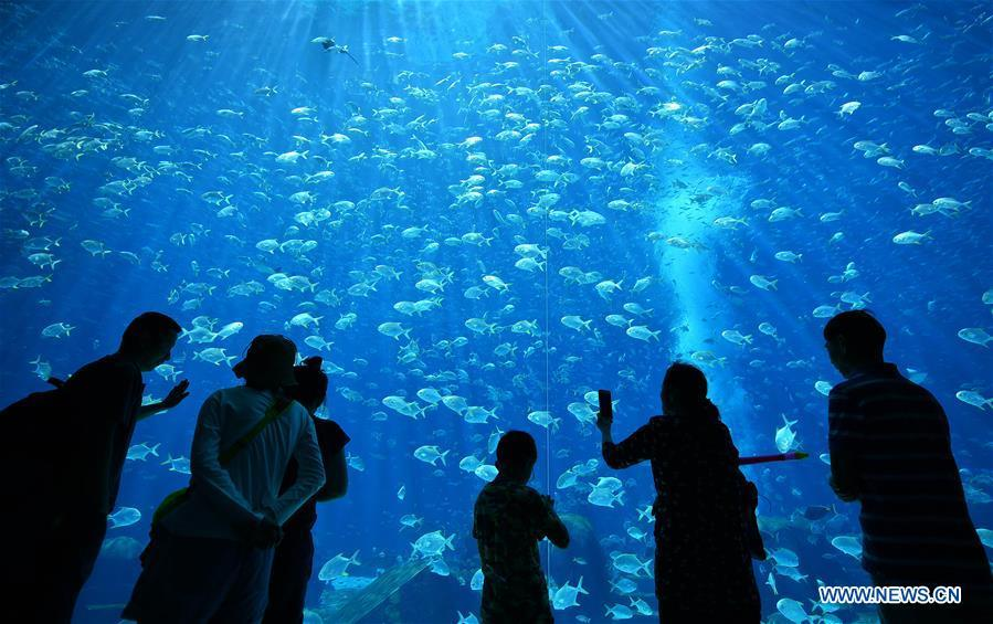 Tourists visit an aquarium in Sanya, south China\'s Hainan Province, Feb. 17, 2018. Hainan aims to be an international tourism consumption center. (Xinhua/Guo Cheng)