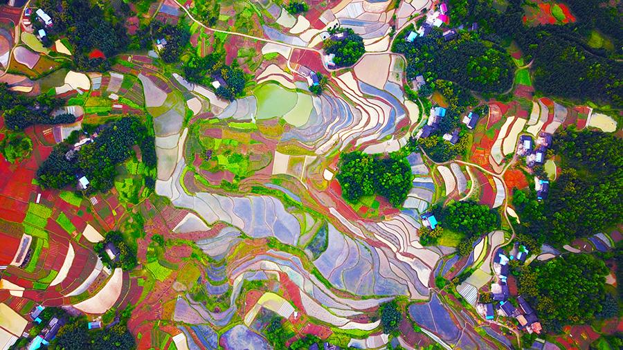 The aerial photo series of the countryside in SW China\'s Chongqing Liangping district wins the first prize at the 2018 National Yangtze River Photo Competition held by the Office of the Central Cyberspace Affairs Commission, the Ministry of Ecology and Environment and 11 local cyberspace affairs commissions in the Yangtze River Economic Belt. The photos were shot in April at Tiemen village, Tiemen county. The photo competition attracted 1,395 participants from all walks of life and their works reflected the natural beauty and people\'s life along the river. (Photo/China Daily)