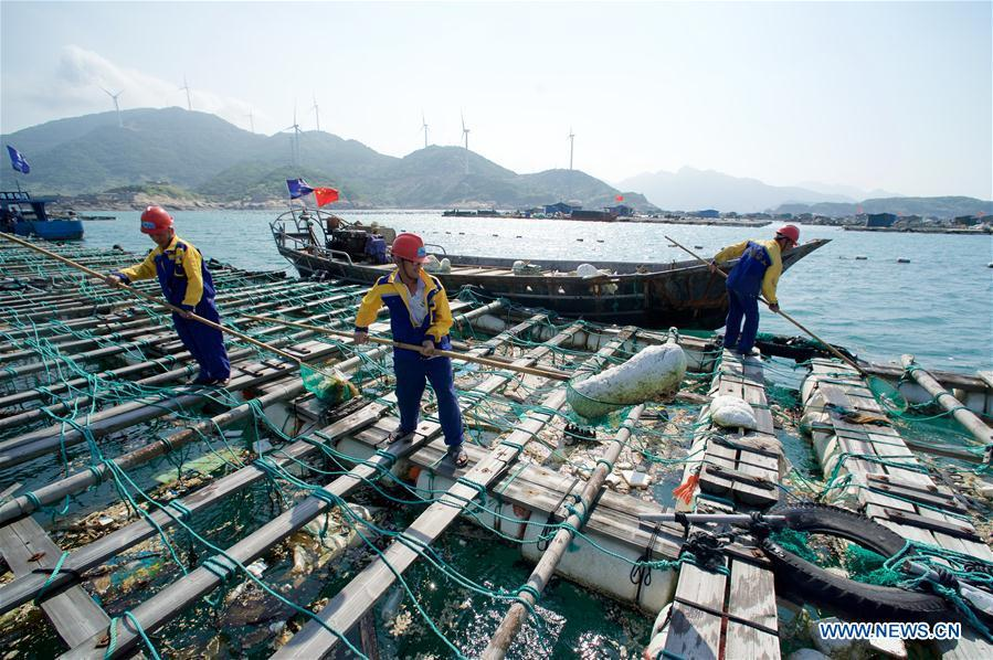 Cleaners clear the floating waste in the fish breeding rafts in Huangqi Township of Lianjiang County, southeast China\'s Fujian Province, June 6, 2017. World Oceans Day, a UN-designated day held annually on June 8, aims to arouse people\'s consciousness to preserve oceans on Earth. (Xinhua/Jiang Kehong)