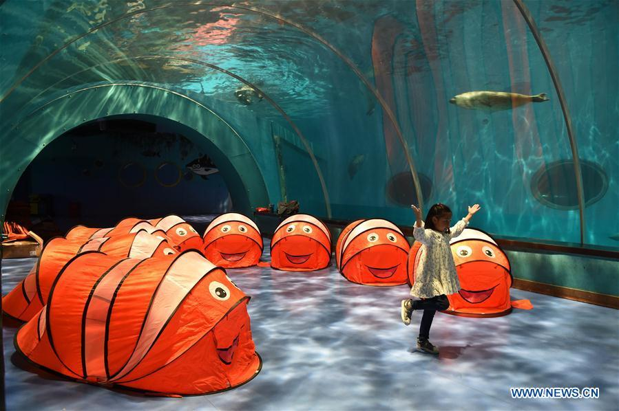 A little girl stays at a camp in Qingdao Haichang Polar Ocean Park in Qingdao, a coastal city in east China\'s Shandong Province, May 19, 2018. World Oceans Day, a UN-designated day held annually on June 8, aims to arouse people\'s consciousness to preserve oceans on Earth. (Xinhua/Li Ziheng)