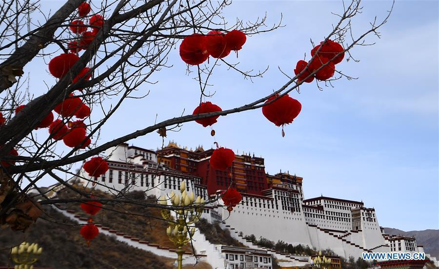 Decorations are hung from a tree in front of the Potala Palace in Lhasa, capital of southwest China\'s Tibet Autonomous Region, Feb. 12, 2018, to greet the Spring Festival and Tibetan New Year. (Xinhua/Chogo)