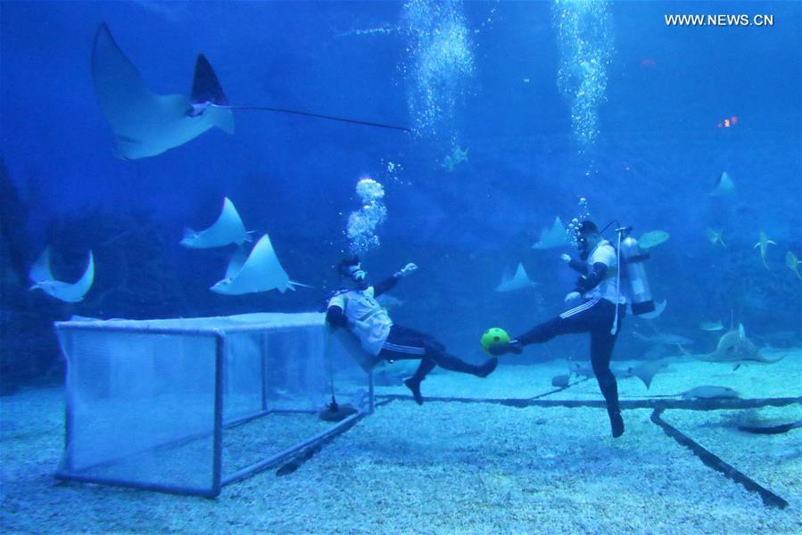 Divers play football at the Haichang Jingsha Ocean Park in Yantai, east China\'s Shandong Province, June 14, 2018. (Xinhua/Tang Ke)