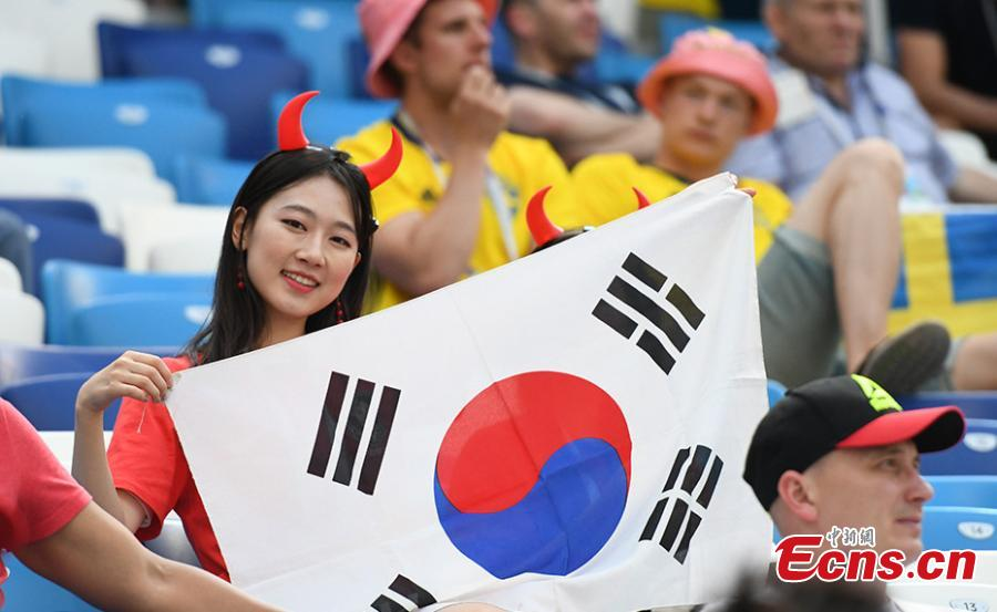 A fan during the match between Sweden and South Korea in Nizhny Novgorod Stadium, Nizhny Novgorod, Russia, June 18, 2018. (Photo/Agencies)