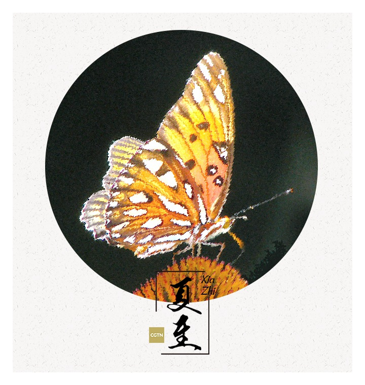 Fans have later become an indispensable part of Chinese culture, with scholars and artists painting and writing on them. Fans were considered by many as not only a tool, but also an artistic work, which has great collection value.  Nowadays, there is even a museum of Chinese fans in Hangzhou city of east China's Zhejiang Province.