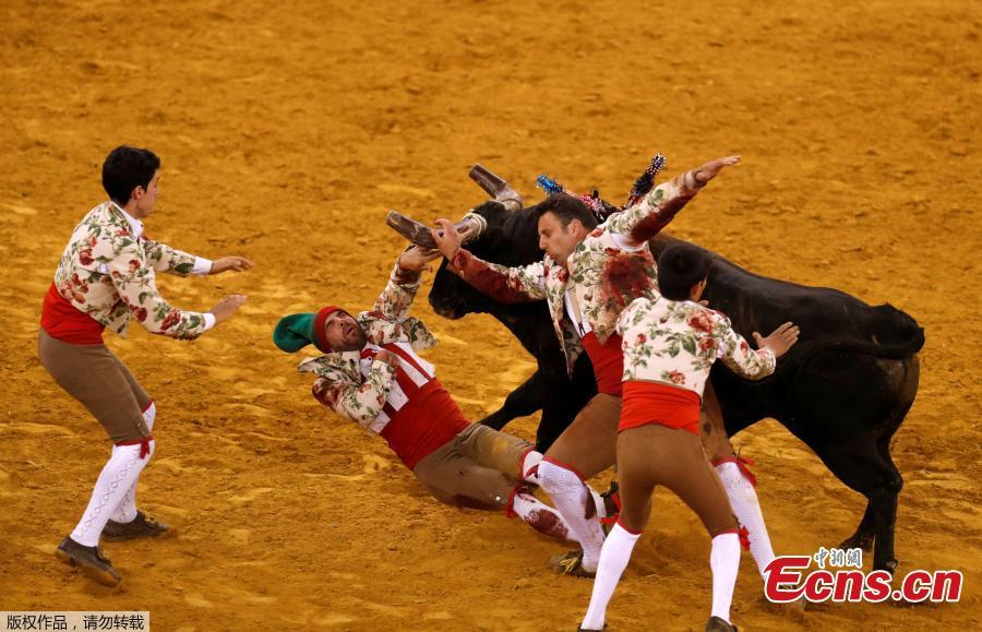 Members of Monsaraz forcados group perform during a bullfight at Campo Pequeno bullring in Lisbon, Portugal June 21, 2018. (Photo/Agencies)