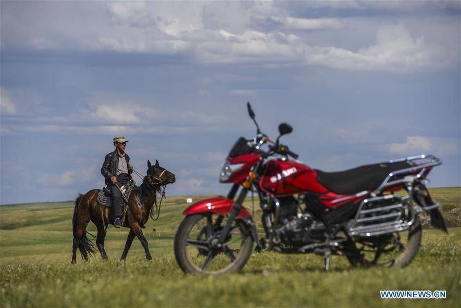 A herdsman rides a horse at the summer pasture on the Barlik Mountain in Yumin County, northwest China\'s Xinjiang Uygur Autonomous Region, June 22, 2018. Local herdsmen have transferred their livestock to summer pastures on the Barlik Mountain since late June and will stay here until September. Local authorities has devoted efforts in recent years to protect the ecological environment on the pasture and upgrade driveways to improve the infrastructure construction in the pasturing area. (Xinhua/Hu Huhu)