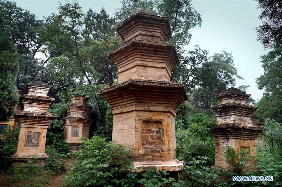 Photo taken on June 26, 2018 shows the pagoda forest of the Fengxue Temple in Ruzhou City, central China\'s Henan Province. Renowned in Ruzhou, the unique Fengxue Temple has a history of over 1,800 years with over 80 pagodas. Pagodas built in ancient times in Henan act not only as landmarks for sight-seeing, but also as observers of the Chinese history. (Xinhua/Li An)