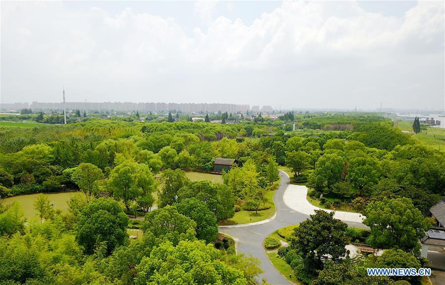 Aerial photo taken on July 29, 2017 shows the Pujiang Country Park in Pudong of Shanghai, east China. China announced the opening-up and development of Pudong in 1990. Pudong is expecting to take the opportunity of celebrating the 40th anniversary of China\'s reform and opening-up to continue to spearhead the country\'s reform and development. (Xinhua/Fang Zhe)