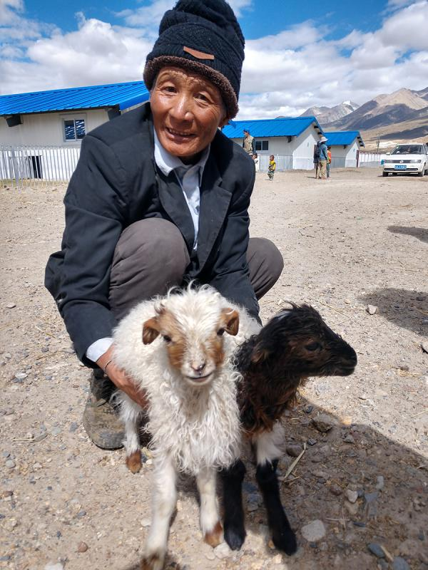 Villagers works at Caiqutang\'s breeding farm in Lhasa, Tibet autonomous region, June 24, 2018. (Photo/chinadaily.com.cn)