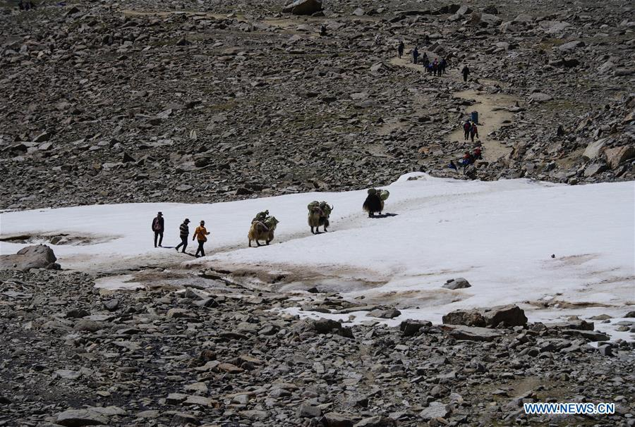 Indian pilgrims travel to Mount Kangrinboqe, a sacred Hindu and Buddhist site, with assistance of a yak transport team, in Ali Prefecture, southwest China\'s Tibet Autonomous Region, June 25, 2018. This year, the Nathu La Pass is expected to see about 500 officially-organized pilgrims from India who will make the 2,874-km pilgrimage, according to Yang Zhigang, deputy director of the office of foreign affairs and overseas Chinese affairs in Xigaze City. (Xinhua/Liu Dongjun)