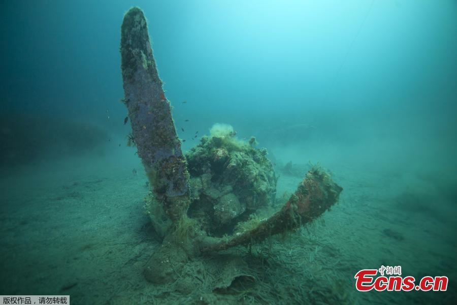 A French military diver member of the FS Pluton M622 navy de-mining ship, swims on July 2, 2018, above the wreck of an USAAF P-47 Thunderbolt (Warthog) US fighter plane, which crashed in 1944 during the Second World War (WWII), off the French Mediterranean island of Corsica, where a unite was based from 1944 at what was then dubbed the \'Alto airfield\' on the east coast of the island. The US agency the Defense POW/MIA Accounting Agency (DPAA) along with the help of the French navy are using divers to search for any remains of the US pilots that died during WWII and to identify them using their DNA, also collecting any other relevant material. (Photo/Agencies)