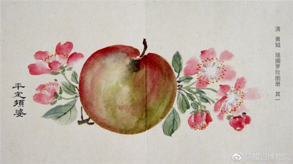 A painting by Qing Dynasty artist Huang Yue portrays an apple. (Photo/Official Weibo account of the Palace Museum)