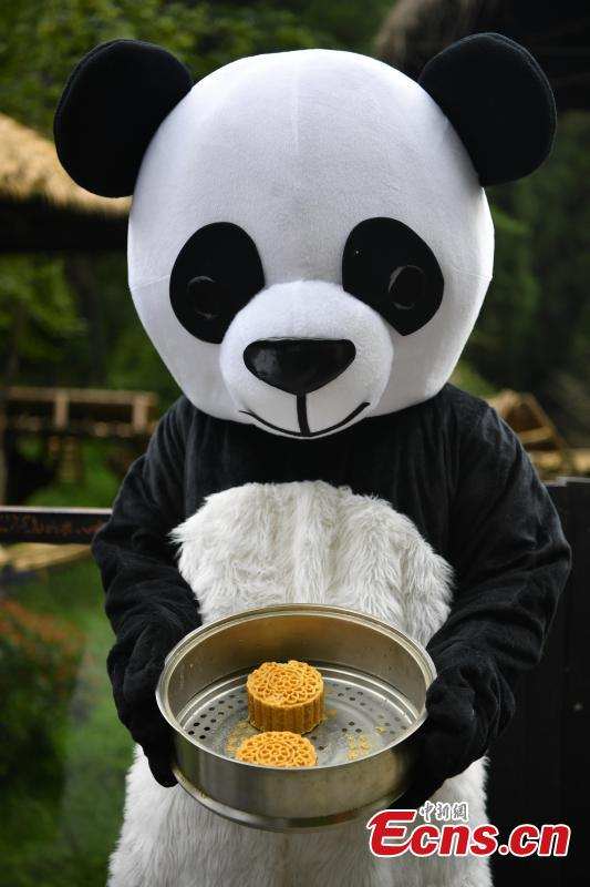 A keeper dressed in a panda uniform shows snacks that are fed to the animals at the Yunnan Wildlife Park in Kunming City, Southwest China's Yunnan Province, July 3, 2018. The park has opened a panda kitchen where visitors can see how keepers prepare food for the animals and also participate in the preparation process in the future. (Photo: China News Service/Liu Ranyang)