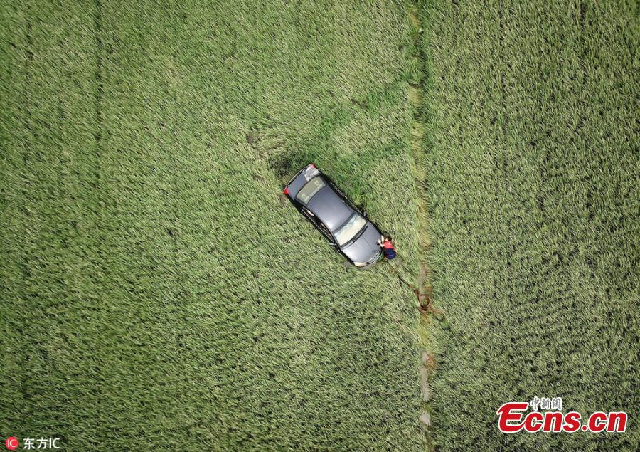 A car is washed into a rice paddy field during a flood caused by rainstorms in Huilong Town, Southwest China's Sichuan Province, July 3, 2018. (Photo/IC)