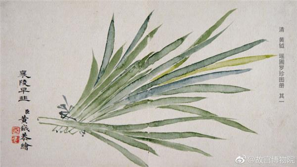 A painting by Qing Dynasty artist Huang Yue portrays Chinese chives. (Photo/Official Weibo account of the Palace Museum)