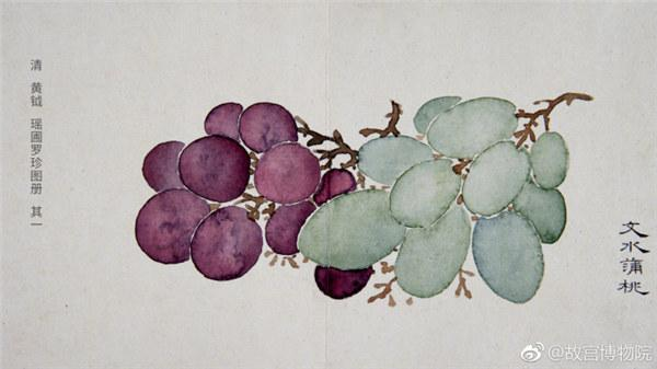 A painting by Qing Dynasty artist Huang Yue portrays grapes. (Photo/Official Weibo account of the Palace Museum)