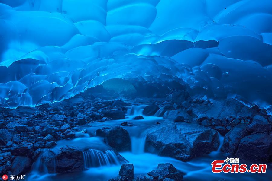 Tour guide Shayne McGuire has released stunning images from her expeditions, showing the inside of Alaska\'s melting Mendenhall Glacier glowing a beautiful blue.(Photo/IC)