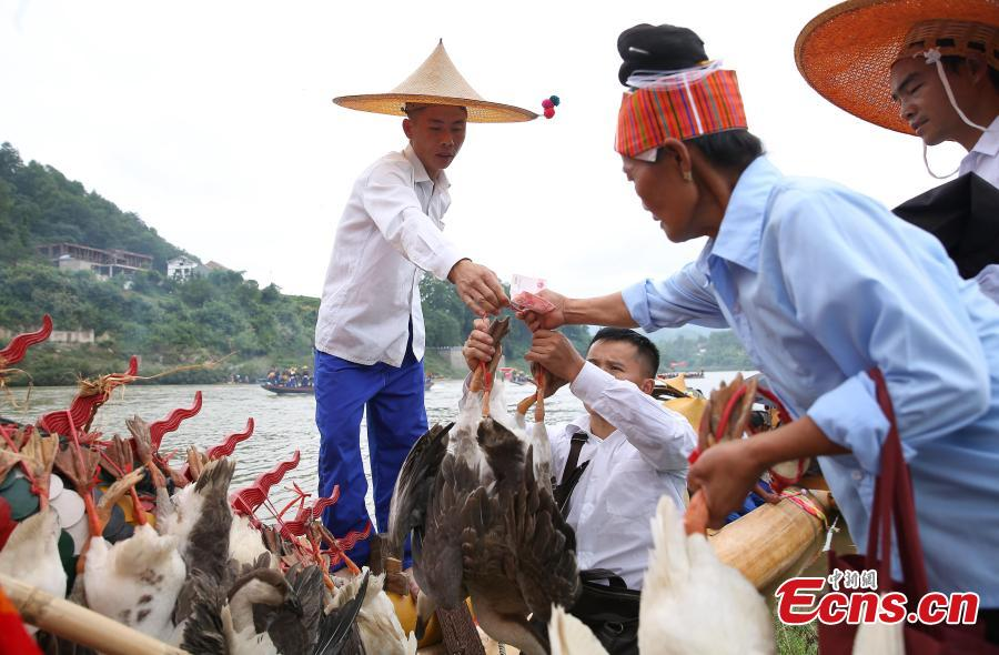Miao people celebrate the dragon boat festival in Qingshui River, Taijiang County, Southwest China's Guizhou Province, July 8, 2018. The dragon boat of the Miao is rather special. It is commonly made from a large fir or phoenix tree. Before the contest, villagers will offer chicken and duck to pray for luck and prosperity. The local festival was recognized as a national intangible cultural heritage in 2008. (Photo: China News Service/Huang Xiaohai)