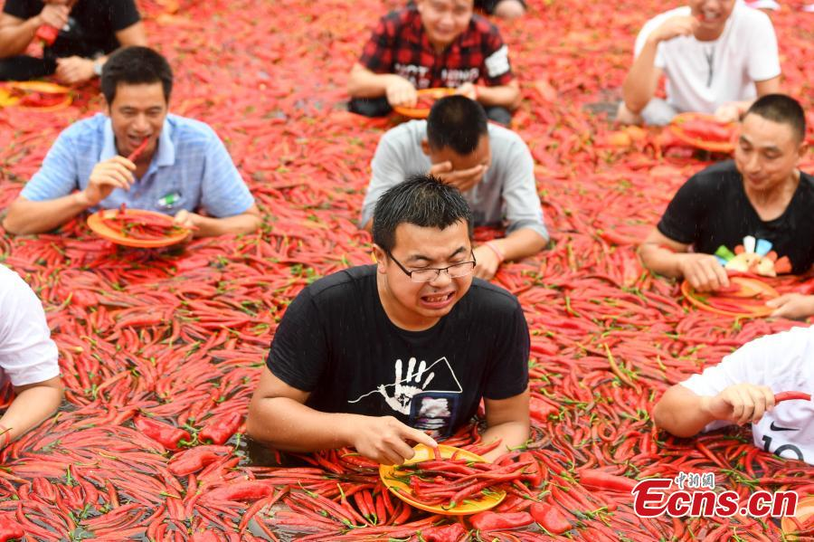 Participants chew chili peppers while immersed in a pool filled with peppers during a contest in Ningxiang City, Central China's Hunan Province, July 8, 2018. Tang Shuaihui, a local resident, swallowed 50 chili peppers in one minute to win first prize. (Photo: China News Service/Yang Huafeng)