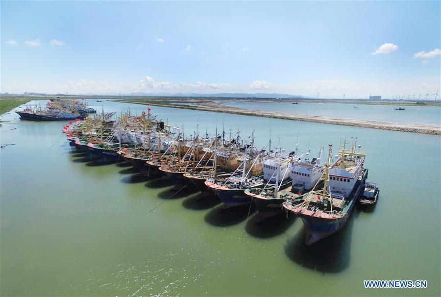 Fishing boats are seen at berth at a harbor in Songmen Township of Wenling City, east China\'s Zhejiang Province, July 9, 2018. A yellow-level alert has been issued and third-level emergency response has been activated to cope with approaching typhoon Maria, the eighth typhoon this year, in China\'s coastal provinces. (Xinhua/Liu Zhenqing)