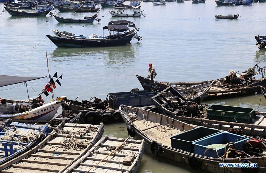 Fishing boats are seen at berth at a harbor in Liuao Township of Zhangpu County, southeast China\'s Fujian Province, July 9, 2018. A yellow-level alert has been issued and third-level emergency response has been activated to cope with approaching typhoon Maria, the eighth typhoon this year, in China\'s coastal provinces. (Xinhua/Qiu Feng)