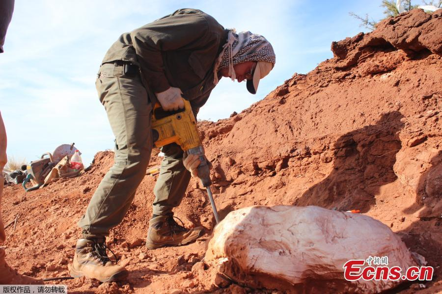 Photo released on July 9, 2018 shows an investigator works on the extraction of the remains of a giant dinosaur -- \