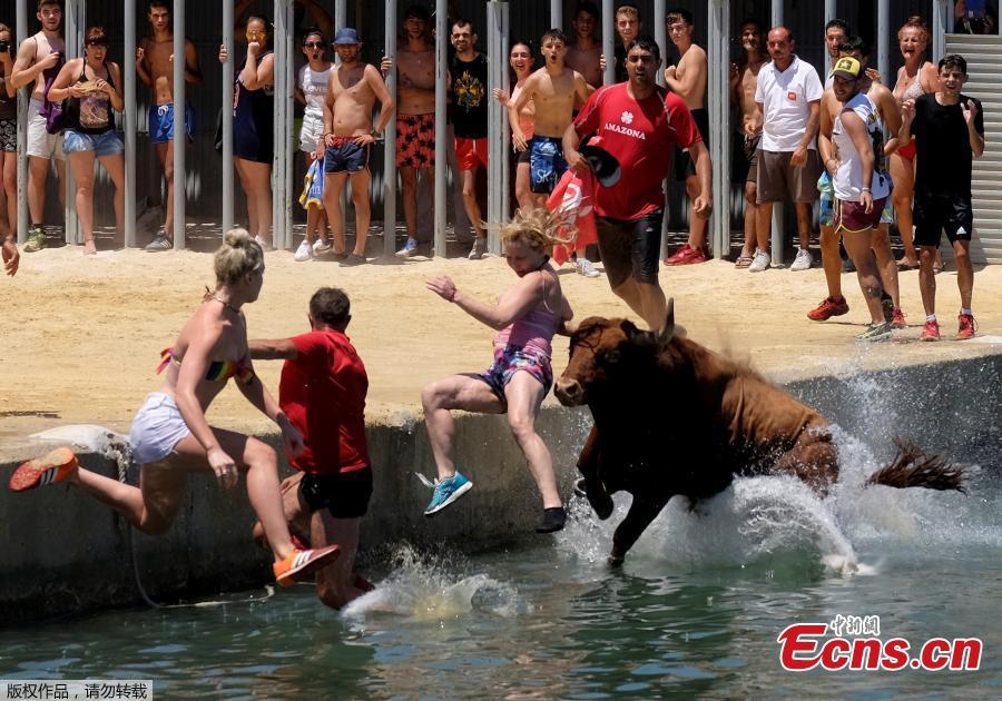 Revelers chasing a bull jump into the sea during the \