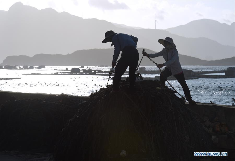 Fishermen reinforce the fishing gear on the shore in Houwan Village of Tailu Town in Lianjiang County, southeast China\'s Fujian Province, July 10, 2018, as Typhoon Maria, the eighth typhoon this year, approaches the Chinese coast. China\'s National Meteorological Center (NMC) issued this year\'s first red alert for Typhoon Maria, which is expected to hit China\'s coastal provinces on Wednesday morning. (Xinhua/Jiang Kehong)