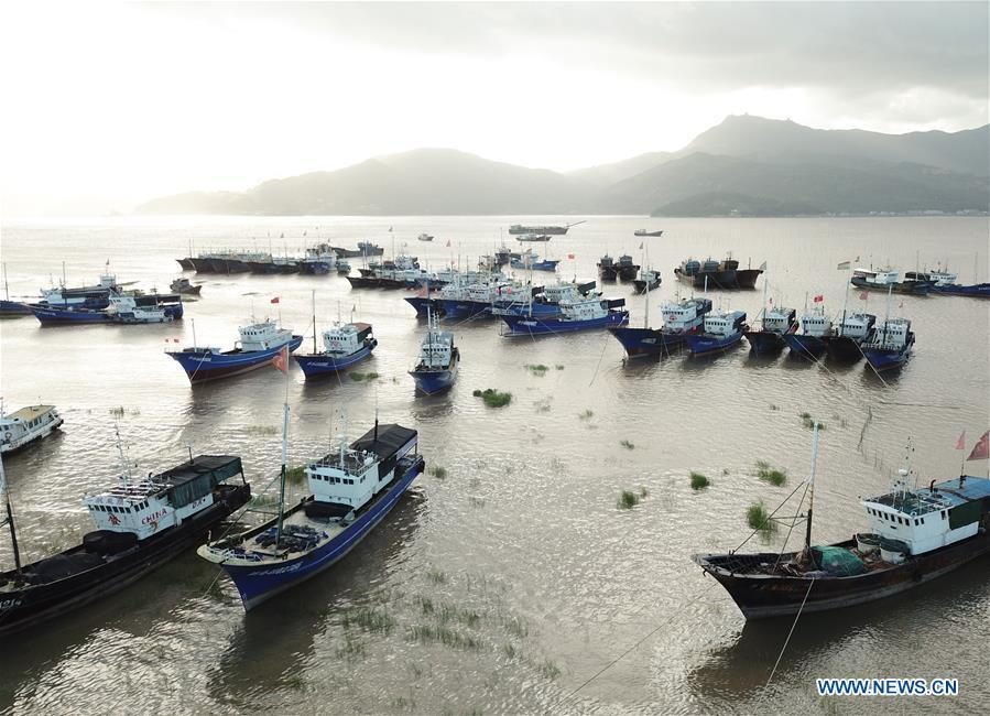 Aerial photo taken on July 10, 2018 shows fishing boats berthing at a harbor in Xiaguan Town of Cangnan County, east China\'s Zhejiang Province, as Typhoon Maria, the eighth typhoon this year, approaches the Chinese coast. (Xinhua/Weng Xinyang)