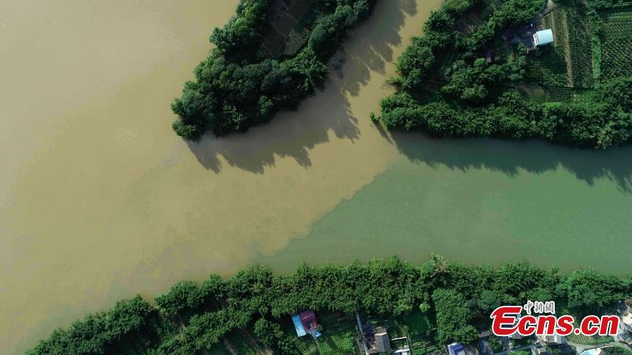 An aerial view of muddy water mixing with clean after strong rainfall in Rong'an County, South China's Guangxi Zhuang Autonomous Region, July 10, 2018. (Photo: China News Service/Tan Kaixing)