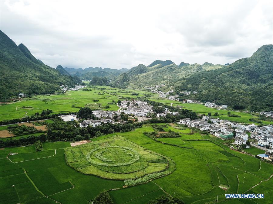 This aerial photo taken on July 15, 2018 shows a village embraced by karst hills within the Wanfenglin scenic area in Xingyi, southwest China\'s Guizhou Province. (Xinhua/Tao Liang)