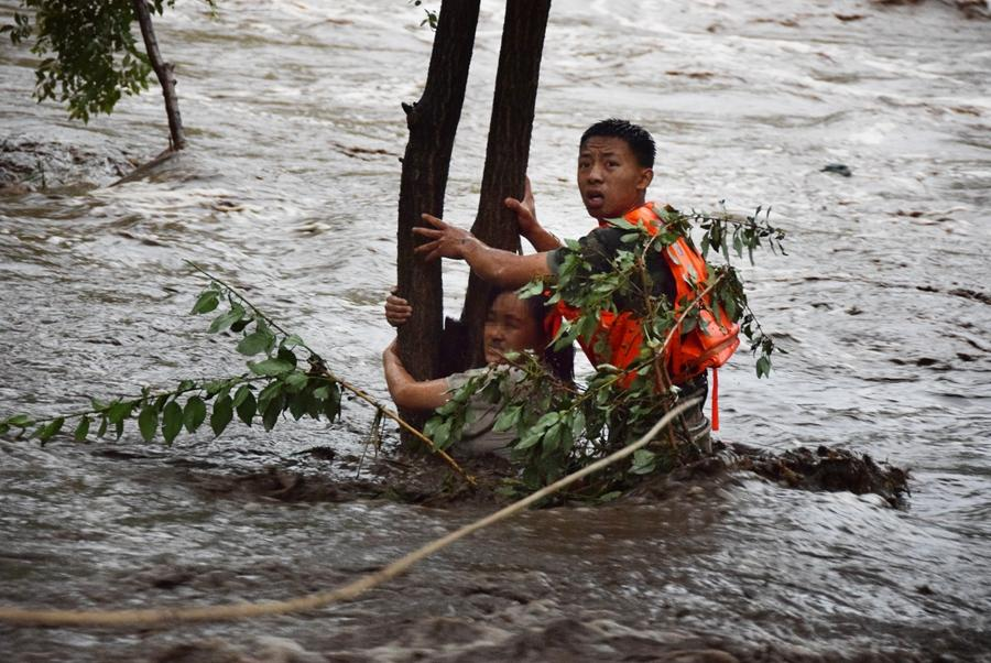 A firefighter tries to rescue a woman clinging to a tree after she was stranded in floodwaters in Huairou district, Beijing, on July 16, 2018. The woman\'s vehicle was damaged by water in the flood triggered by a torrential rain. She abandoned the vehicle and tried to swim to a safe place but was held back by turbulent water flow. (Photo provided to chinadaily.com.cn)