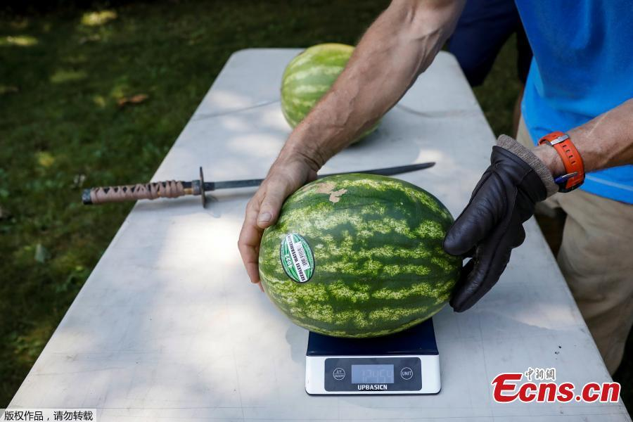 A watermelon is weighed prior to record setting attempt by Ashrita Furman, who holds more Guinness World Records than anyone, for slicing the most watermelons in half on his own stomach in one minute in New York City, U.S., July 17, 2018. (Photo/Agencies)