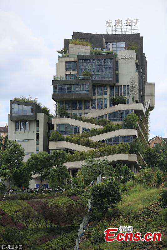 A building covered in green plants in Liangjiang New Area, Southwest China's Chongqing Municipality. The 12-story building built in 2014 has tens of thousands of plants on the exterior wall, making the towering structure a pleasant green attraction. It's reported that the building's design emphasized natural air ventilation and used old rock slabs collected in Chongqing. (Photo/VCG)