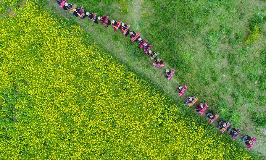 Photo taken on July 7, 2017 shows villagers praying for harvest in a field during a festival in Lhunze County, southwest China\'s Tibet Autonomous Region.(Xinhua/Purbu Zhaxi)
