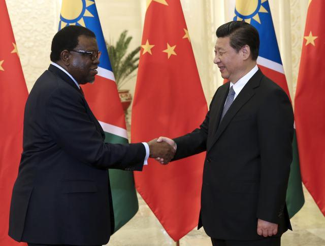 President Xi Jinping meets with Namibian Prime Minister Hage Geingob in Beijing April 8, 2014. (Photo/Xinhua)