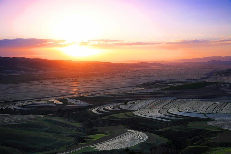 Protective film covers large areas of a cornfield in Wuzhai county, North China\'s Shanxi Province, creating an aerial view that looks like a free-form modern painting. The scene attracts summer tourists who enjoy nature\'s beauty. (Photo by Jiang Xinsheng/China Daily)