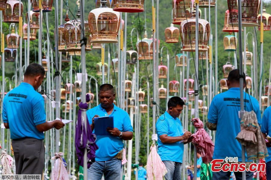 Thai Muslim judges judge during a bird-singing contest in the southern province of Pattani, Thailand, July 22, 2018. (Photo/Agencies)