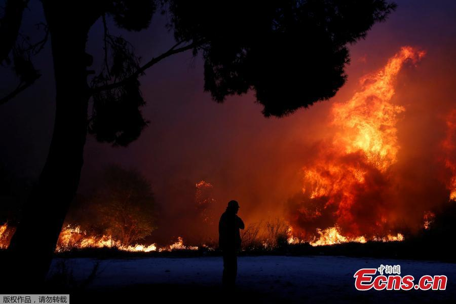 A man looks at the flames as a wildfire burns in the town of Rafina, near Athens, Greece, July 23, 2018. At least 20 people died and more than 100 were injured on Monday as a wildfire swept through a small resort town in eastern Greece with many victims trapped by flames as they fled. (Photo/Agencies)