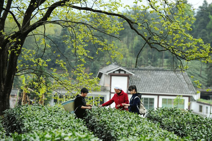 The development of the industry and related tourism has raised living standards for impoverished residents