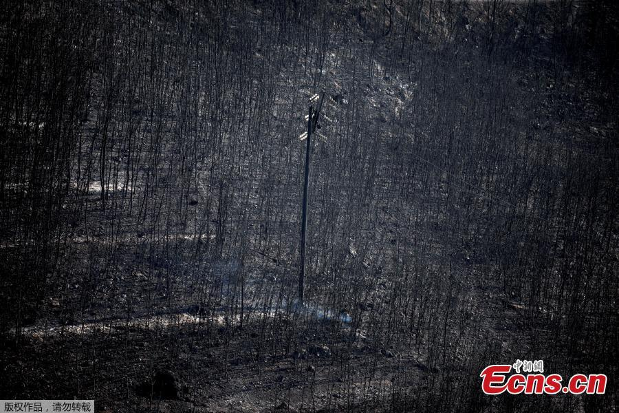 An electricity pole stands among burnt trees following a wildfire in Neos Voutzas, near Athens, Greece, July 25, 2018. (Photo/Agencies)