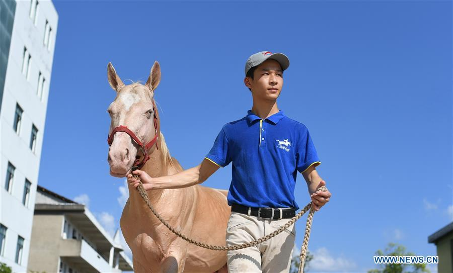 Huang Wanpeng, a student of Sunshine Riding School, goes for a walk with a horse in Yihuang County of Fuzhou, east China\'s Jiangxi Province, July 25, 2018. Equestrianism had never been heard of in Yihuang, an agricultural county in east China\'s Jiangxi Province, until Sunshine Riding School began recruiting rural teenagers in 2015. So far, most of the 90 students are working or aspiring to work in horse riding clubs in China\'s largest cities such as Beijing, Shanghai and Hangzhou. (Xinhua/Zhou Mi)